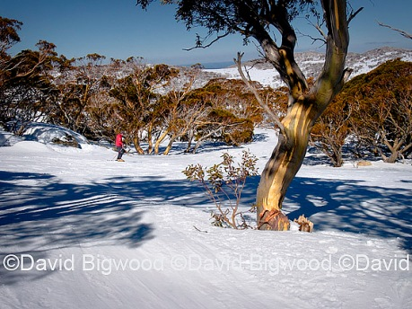 Perisher Valley, Snowy Mountains, NSW, Australia
